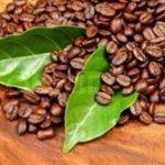 قیمت قهوه اسپرسو ایتالیایی کارارو