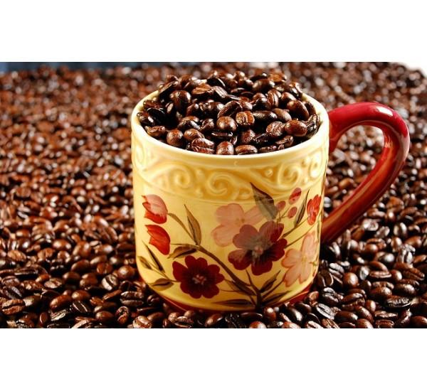 خرید عمده قهوه فرانسه مولیناری