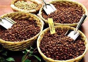 عرضه کننده دانه قهوه اسپرسو
