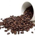 فروش دانه قهوه روبوستا مرغوب