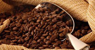 قیمت قهوه ترک شازیلی