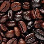 پخش قهوه اندونزی