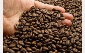خرید عمده قهوه ایرانی