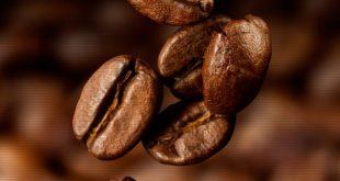 انواع قهوه هندی