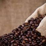 قهوه کنیا مرغوب