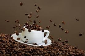 صادرات قهوه ترک مارک