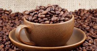 دانه قهوه هندی