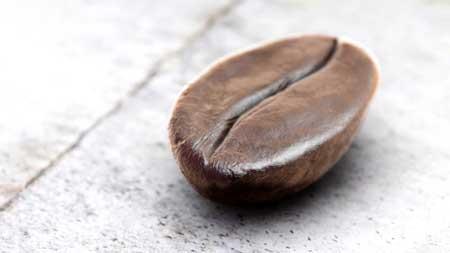 قهوه چری تلخ
