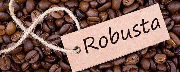 قهوه روبوستا فله