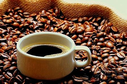 خرید عمده قهوه تهران
