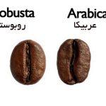 قهوه روبوستا اسپرسو