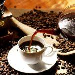 عرضه قهوه ترک عالی