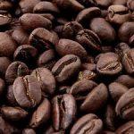 خرید عمده قهوه سبز لاغری