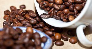 خرید قهوه عربیکا