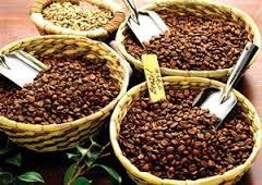 انواع قهوه خام
