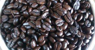 پخش اینترنتی قهوه هندی مرغوب