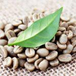سایت عرضه قهوه اسپرسو فوری چلینی