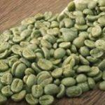 عرضه قهوه سبز