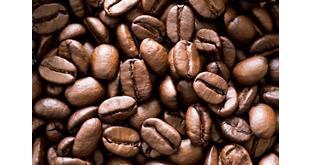 فروش قهوه ربوستا
