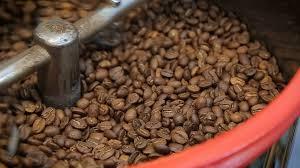 دانه قهوه رست شده فروش مستقیم