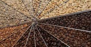 واردات انواع قهوه ایتالیایی