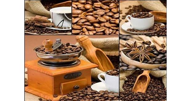 خریدار قهوه رست شده