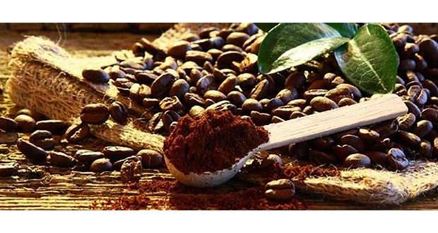 قیمت خرید دانه قهوه سبز از سایت