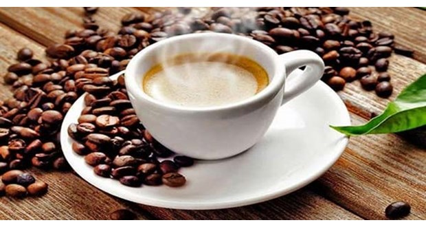قیمت خرید قهوه خام های خارجی
