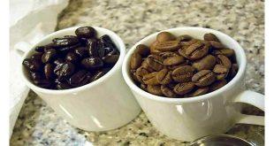قیمت قهوه خام خارجی