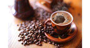 نمایندگی فروش قهوه دارک