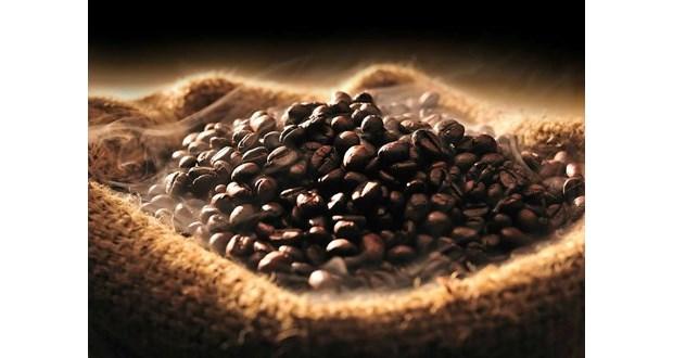 خریدار عمده بهترین انواع قهوه دارک