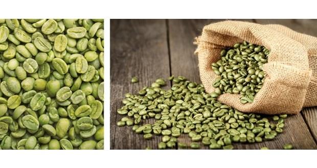 قیمت هر کیلو قهوه سبز درجه یک