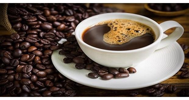 مرکز فروش قهوه مولیناری