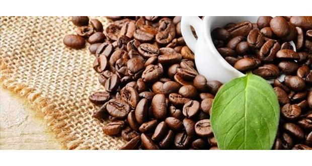 نمایندگی فروش انواع قهوه به شکل فله