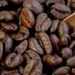 نمایندگی خرید قهوه روبوستا