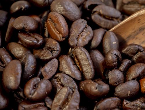 صادرات دانه قهوه از ایران به عراق