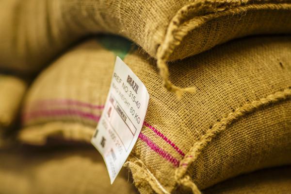 عمده فروشی دانه قهوه خام در بازار های داخلی و خارجی