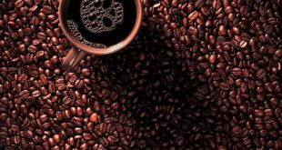 کانال فروش قهوه عمده خام و رست شده
