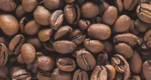 فروش پودر قهوه روبوستا پی بی هند