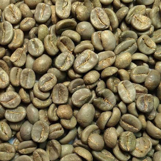 خرید قهوه خام ارزان ویتنام