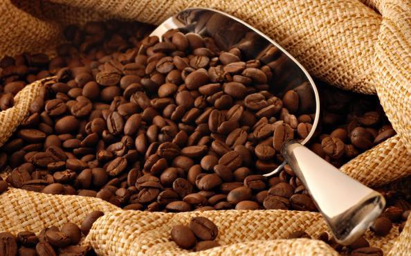 تولید انواع قهوه کنیا اصل