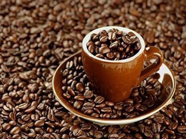 فروش قهوه رست شده به صورت مستقیم