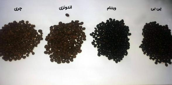 تولید کننده قهوه اسپرسو فوری